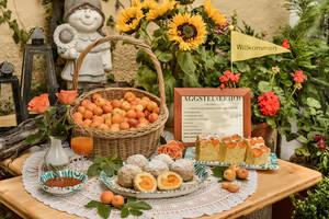 Ein reich gedeckter Tisch mit einer Auswahl an Wachauer Marillenvariationen (reife Marillen, Marillenknödel, Marillenkuchen)