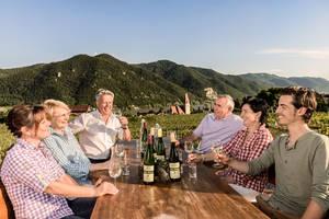 Eine kleine Gruppe von 6 Weinfreunden genießen eine Weindegustation an einem Holztisch im Freien mit grandiosem Ausblick auf Weißenkirchen.