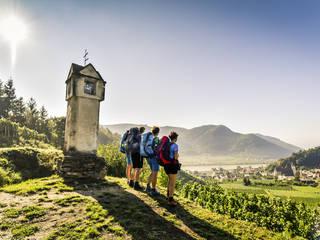 Wanderer am Welterbesteig bei Spitz